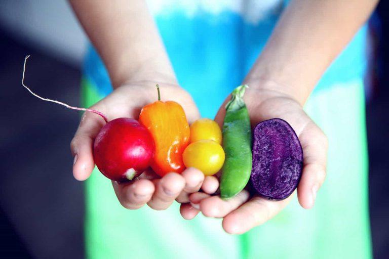 L'alimentation saine et gourmande en naturopathie